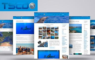 Neue Homepage für den TSCD Freudenstadt